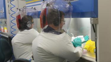 العلماء بدأوا في اختبار طرق للعلاج من فيروس كورونا!