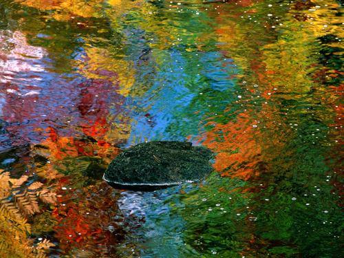 للألوان دور مهم في خلق الشعور الحسي لدينا...شاهدي!🧘🏾♀️