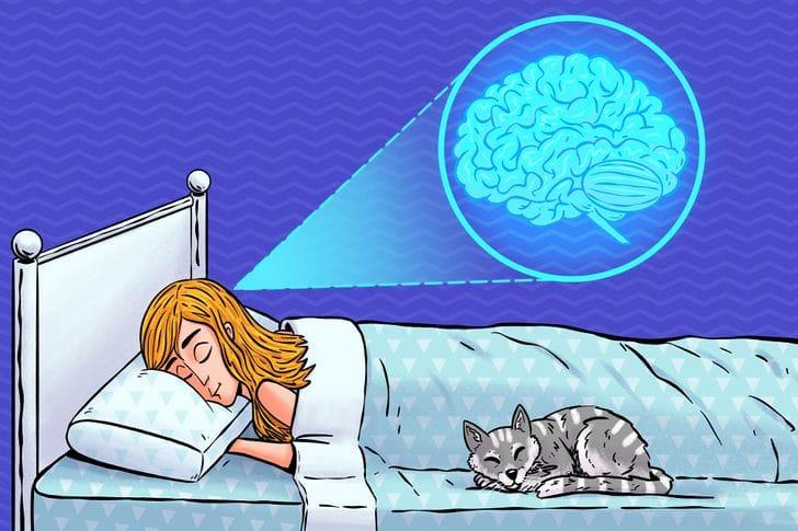 دراسة علمية: قلة النوم قد تجعل الدماغ يأكل نفسه!